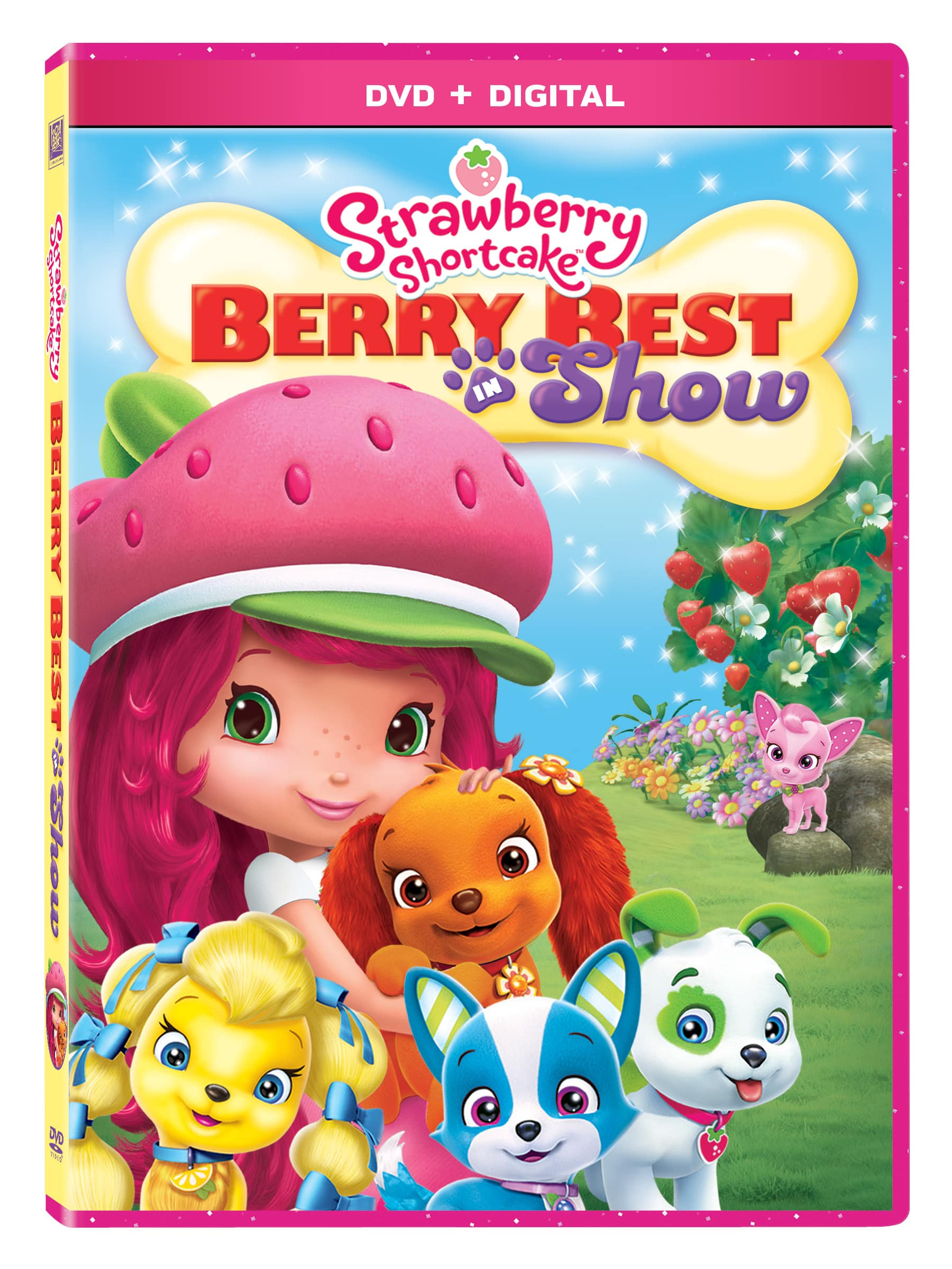 "Strawberry Shortcake ""Berry Best In Show"""